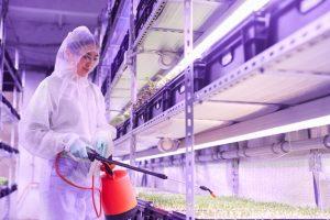 2021-New-General-Service-aziende-agroalimentari-pulizia